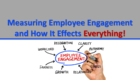 Measuring Employee Engagement and How It Effects Everything!